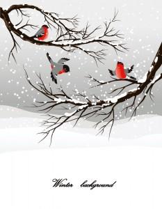 2014年寒中見舞いに使える冬らしい無料イラストまとめ作り方