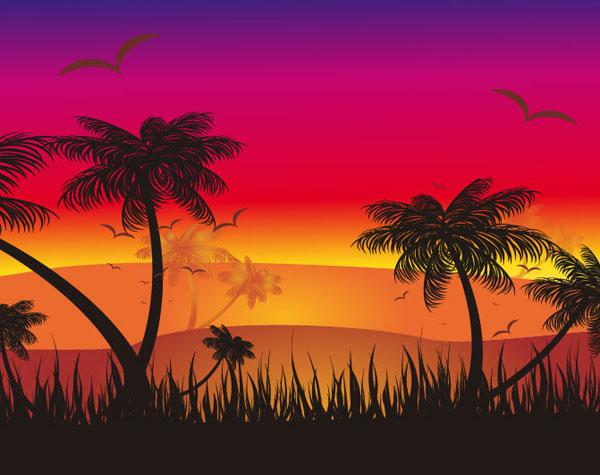 sunset_ill_013