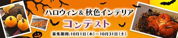 contest_2015fall_009