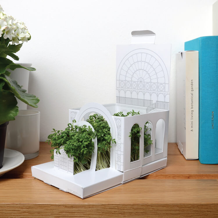 fold-out-miniature-garden-growing-gift-by-post