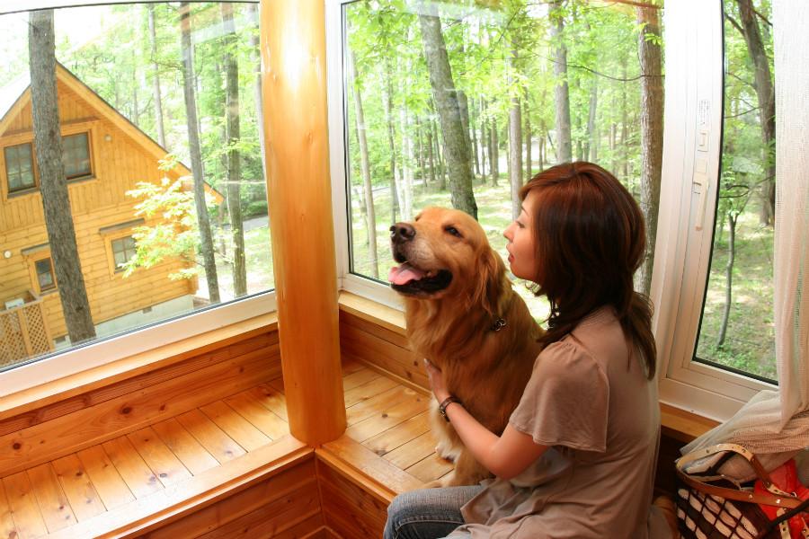 愛犬といつでも一緒に過ごせるわんわんパラダイスなどのサービスを運営しているセラヴィリゾート泉郷様